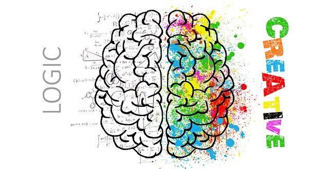 logická a kreativní část mozku