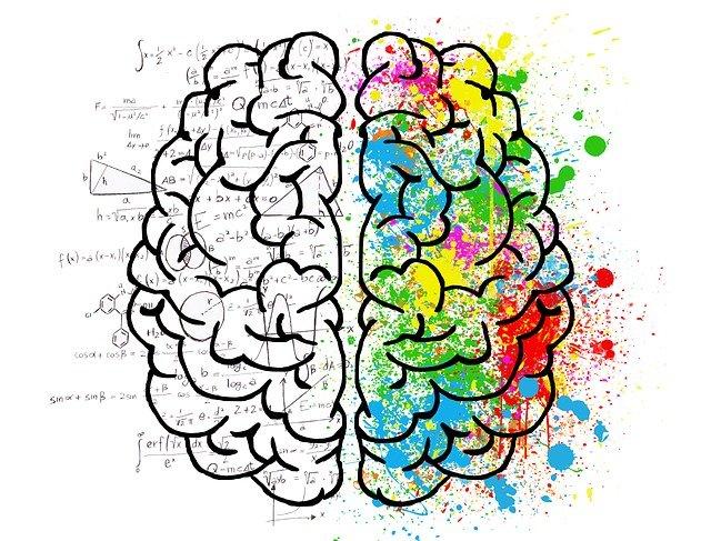rozmanitost mozku
