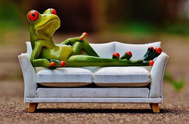 žába na kanapi